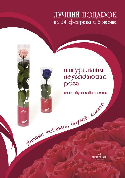 SF_Plakat_3_Rosa_Love_14and8_small