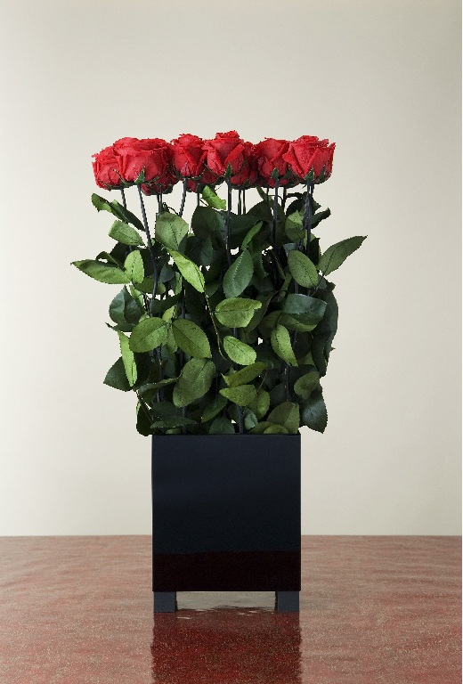 FL_image_Stem_Rose_Arrangement_small
