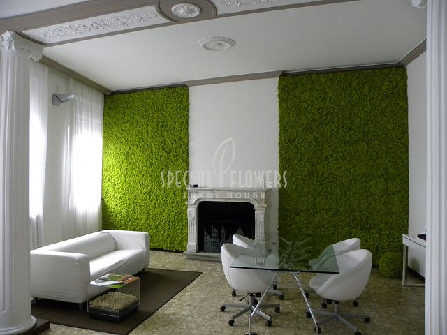 Special_Flowers-greenwall_3